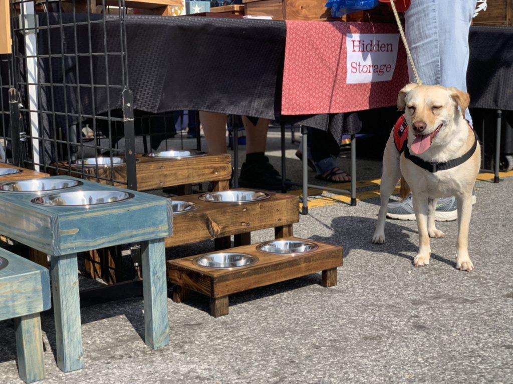 dog at market